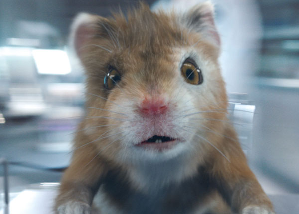 baby hamster arrives at 1 in quarterly vfx animation chart shootonline. Black Bedroom Furniture Sets. Home Design Ideas