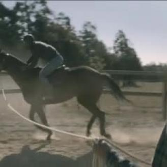 "Top Spot of the Week: Greg Gray Directs Nedbank's ""Reins"""