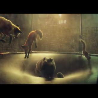 "Dougal Wilson Directs ""#BustertheBoxer"" for John Lewis, adam&eveDDB"