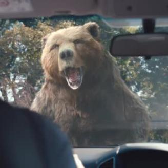 McCann NY, Framestore Call on Animal Kingdom For Lysol