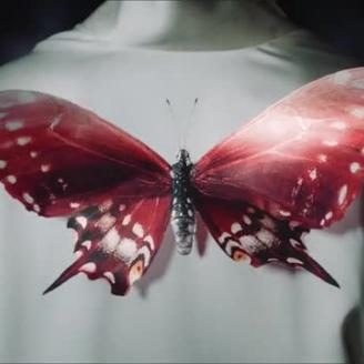 M. Butterfly Trailer