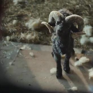 "Director Nick Gordon, MPC Deliver ""Born Confident"" Ram For VW"