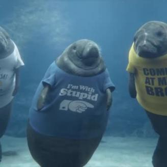 "RadicalMedia's Steve Miller Directs ""Manatee Shirts"" For GEICO, The Martin Agency"