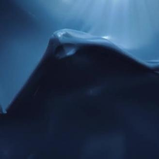 "Top Spot of the Week: FF New York, Alkemy X Form ""Plastic Ocean"" For Sea Shepherd"