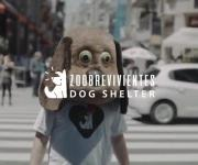 Dhelet Y&R, Buenos Aires, Raises Decibel Awareness OverEffects of Fireworks On Dogs