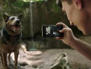 "The Best Work You May Never See: Tribal Worldwide Creates ""Dogumentary"" for IAMS"