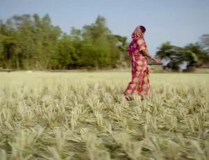 "Top Spot of the Week: Mark Littman Directs ""Arpita Mandal"" For Trickle Up"