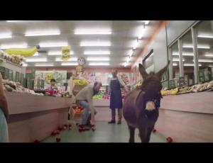 Sweetshop Director Mark Albiston, FCB Auckland Find Donkey Companionship AtMITRE 10