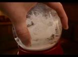 "Toro's ""Snow Globe"""